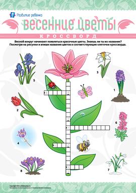 Чайнворд с рисунками «Весенние цветы»