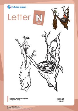 Раскраска «Английский алфавит»: буква «N»