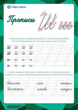 Прописи: буква Ш (русский алфавит)