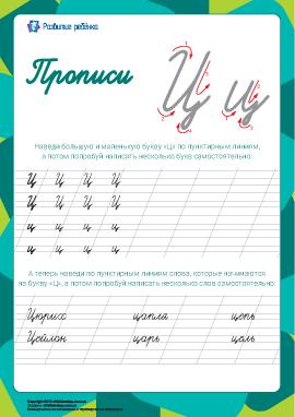 Прописи: буква Ц (русский алфавит)