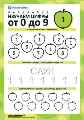 Изучаем цифру «1»