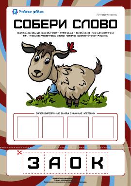 Собери слово «коза»: легкий уровень