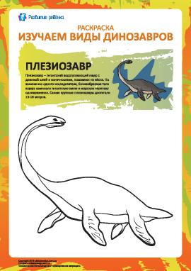Раскраска динозавры: плезиозавр