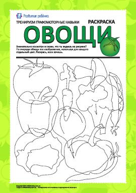 Графомоторные навыки: овощи №2