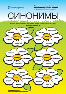 Изучаем синонимы: №6 (русский язык)