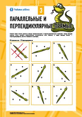 Параллельные и перпендикулярные прямые №3
