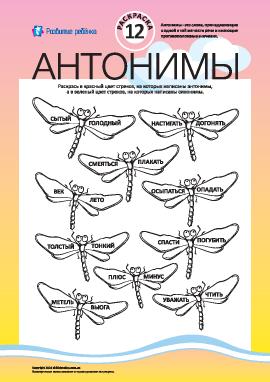 Раскрась антонимы и синонимы №12 (русский язык)