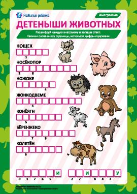 Анаграмма «Детеныши животных»