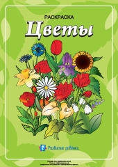 Раскраска «Цветы» – Развитие ребенка