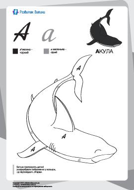 Раскраска по буквам: большая и маленькая «А»