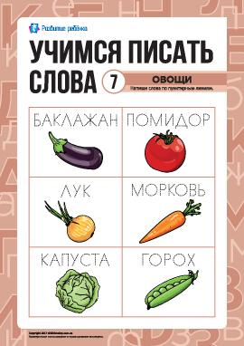 Учимся писать слова по пунктиру: овощи