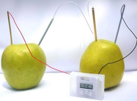 Яблочные часы на фруктовой батарейке