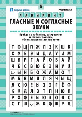 Гласные и согласные звуки № 5 (русский язык)