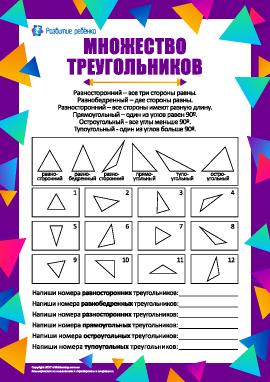 Изучаем различные виды треугольников