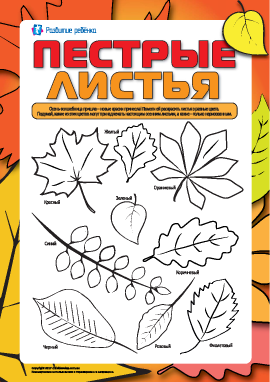 Пестрые листья: раскрашиваем и изучаем цвета