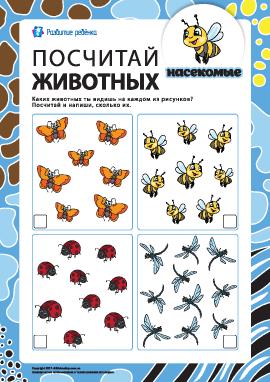 Посчитай насекомых