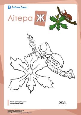 Раскраска «Украинский алфавит»: буква «Ж»