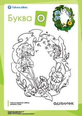Раскраска «Русский алфавит»: буква «О»