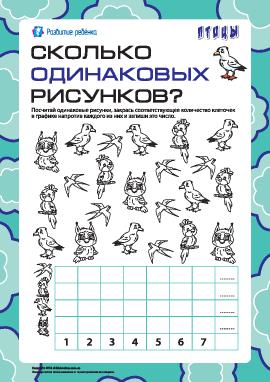 Сколько одинаковых рисунков: считаем птиц