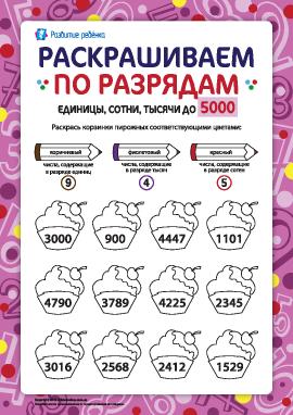 Раскрашиваем и изучаем разряды чисел до 5000