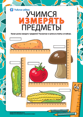 Учимся измерять предметы (№8)