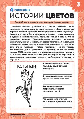 Истории цветов: тюльпан