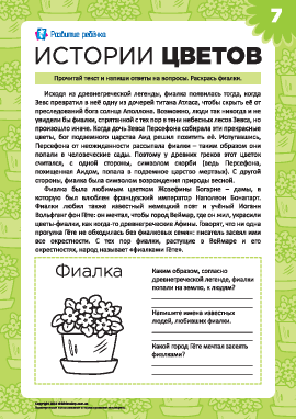 Истории цветов: фиалка