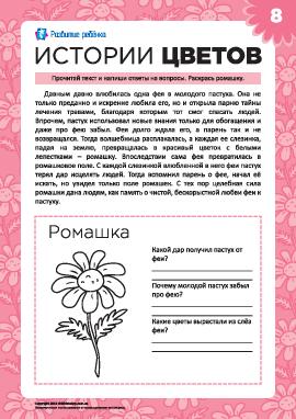 Истории цветов: ромашка