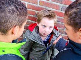 Основные виды школьной травли (буллинга)
