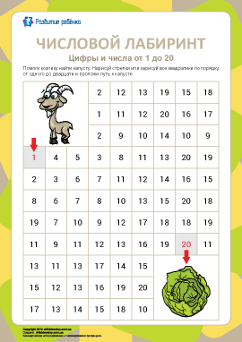 Числовой лабиринт №7: цифры от 1 до 20