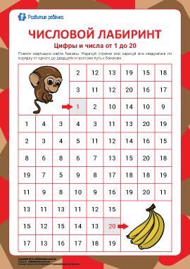 Числовой лабиринт №9: цифры от 1 до 20