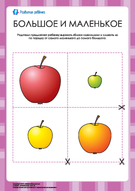 Разложи яблоки по размеру