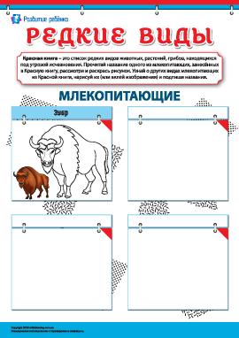 Изучаем редкие виды млекопитающих