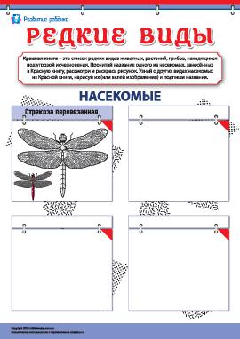 Изучаем редкие виды насекомых