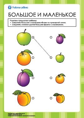 Соедини большие и маленькие фрукты