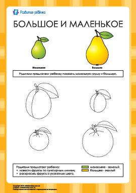 Большое и маленькое: раскраска фрукты
