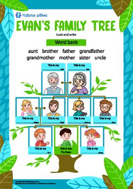 Фамильное дерево мальчика Эвана (английский язык)