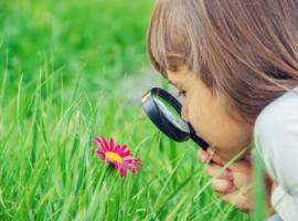 Развиваем у детейестественно-научную компетентность