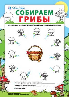 Собираем грибы: готовим руку к письму